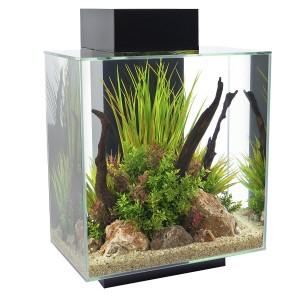 Fluval Edge Komplettset Aquarium