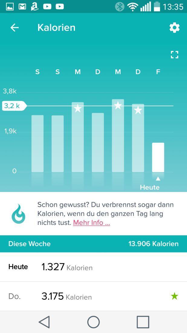 Auswertung der Kalorienbilanz in der Fitbit-App