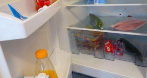 Bomann Kühlschrank Retro Test : Bomann kühlschrank made in bomann retro kühlschrank ksr beige