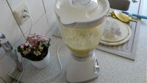 Zubereitung eines Smoothie im Mixer