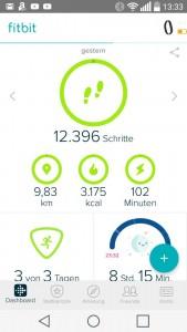 Screenshot Tagesanzeige Fitbit App